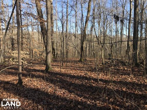 Loudon County Residential Lot : Loudon : Tennessee