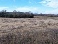 Pasture Home Sites Near Perry : Perry : Houston County : Georgia