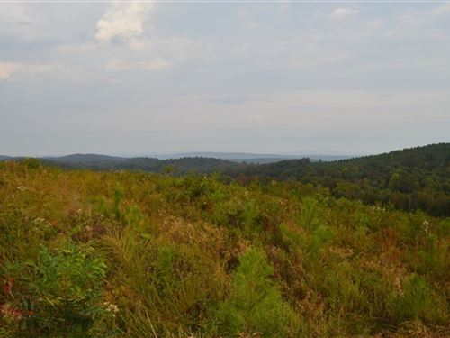9.6 Acre Home/Cabin Site Lake : Howe : Le Flore County : Oklahoma