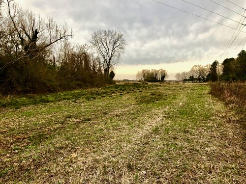 Land For Sale In Hyde County Nc : Belhaven : Hyde County : North Carolina