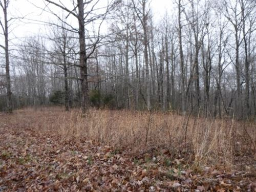 1.19 Acres, Mtn Views, Private Area : Celina : Clay County : Tennessee