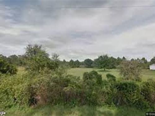 Tuscanooga Rd Vacant Property 110K : Tuscanooga : Lake County : Florida