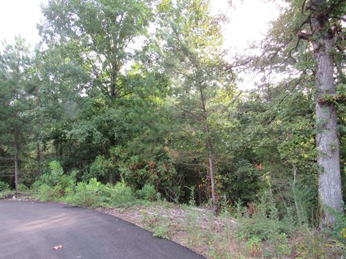 Beautiful Wooded 5 Ac, Homesites : Murphy : Cherokee County : North Carolina