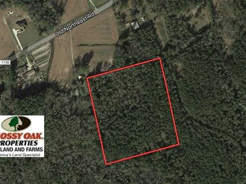 9.2 Acres of Hunting And Timber LA : Lake Waccamaw : Columbus County : North Carolina