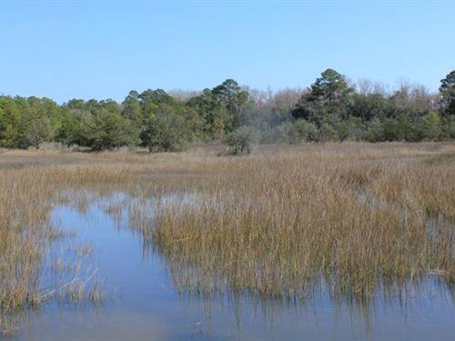 Toogoodoo 5+ Acre Homesite : Meggett : Charleston County : South Carolina
