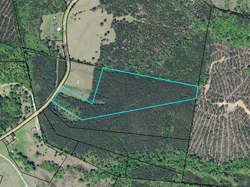 Center Hill School Rd : Union Point : Taliaferro County : Georgia