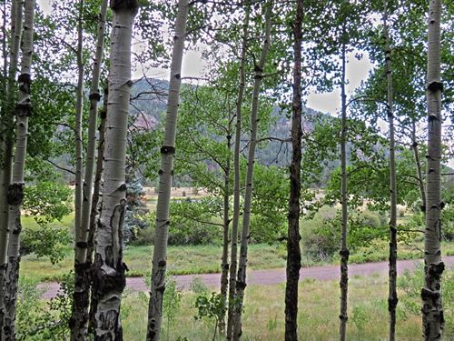 Colorado Mountain Building Site : Antonito : Conejos County : Colorado