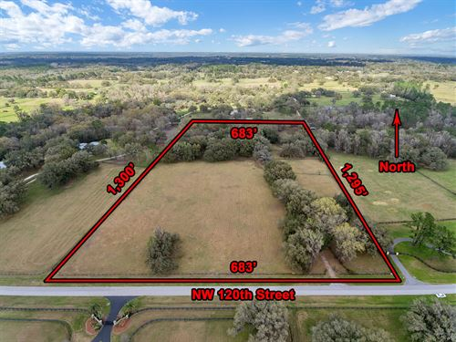 20 Acre Equestrian Farm & Home : Reddick : Marion County : Florida