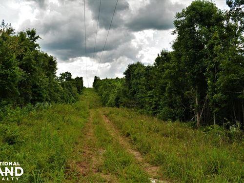 Hwy 278 Homesite Acreage : Piedmont : Calhoun County : Alabama