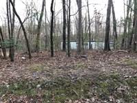 3.73 Private Acres, Dawson County : Dawsonville : Dawson County : Georgia
