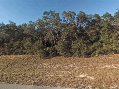 Marion County, Fl $15,000 : Ocala : Marion County : Florida