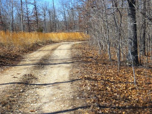 Land, Recreational, Hunting : Mammoth Spring : Fulton County : Arkansas