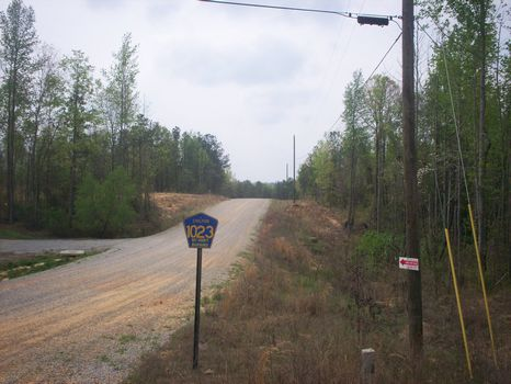 1.2 Ac lot # 11 of 11 : Clanton  : Chilton County : Alabama