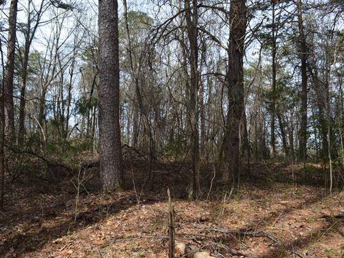 5.75+/- Ac Building Site District 5 : Lyman : Spartanburg County : South Carolina