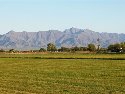 West Phoenix Custom Homesites : Buckeye : Maricopa County : Arizona