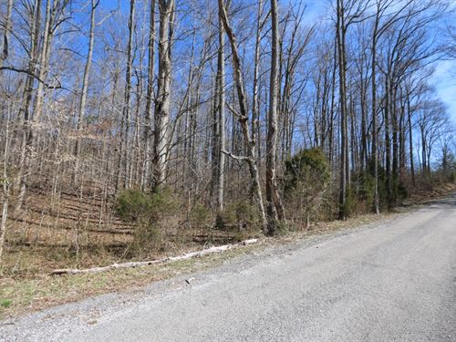 Wooded Tract Minutes From Hwy 111 : Rickman : Overton County : Tennessee