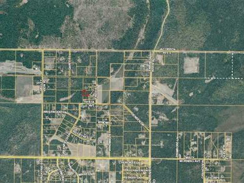 1.21 Acre Lot in Sterling Great : Sterling : Kenai Peninsula Borough : Alaska