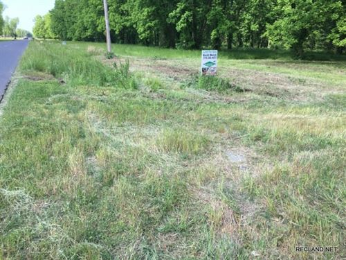 11.5 Ac, Pecan Orchard Home Site : Swartz : Ouachita Parish : Louisiana