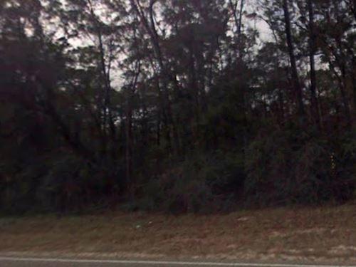Wakulla County, Fl -$8,000 : Crawfordville : Wakulla County : Florida