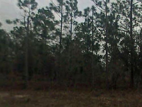 Jackson County, Fl $30,000 : Alford : Jackson County : Florida