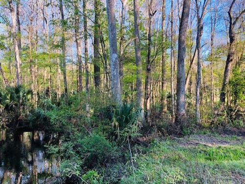 Beautiful 10 Acres 777449 : Inglis : Levy County : Florida