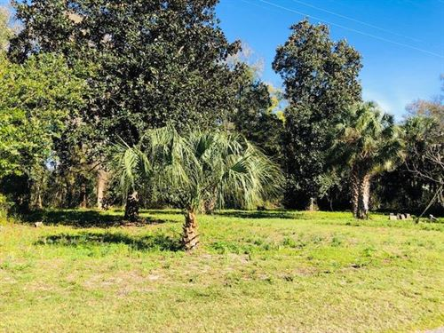 .32 Acre Lot 777454 : Chiefland : Levy County : Florida