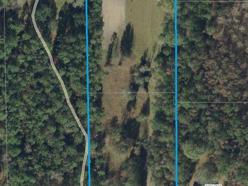 2.63 Acres- Haddock Rd : Hilliard : Nassau County : Florida