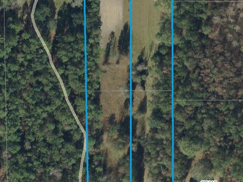 1.31 Acres, Haddock Rd : Hilliard : Nassau County : Florida