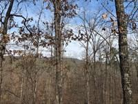 Wooded Acreage With Views : Clinton : Van Buren County : Arkansas