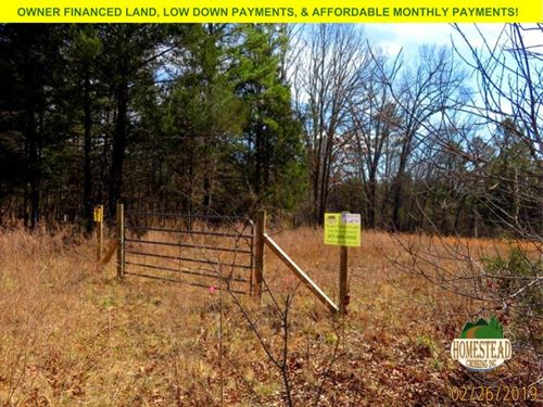 Gated Property, Clearing & Electric : Drury : Ozark County : Missouri