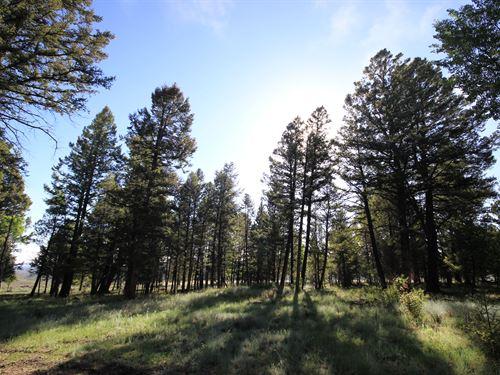 514 Monarch Drive : Gunnison : Colorado
