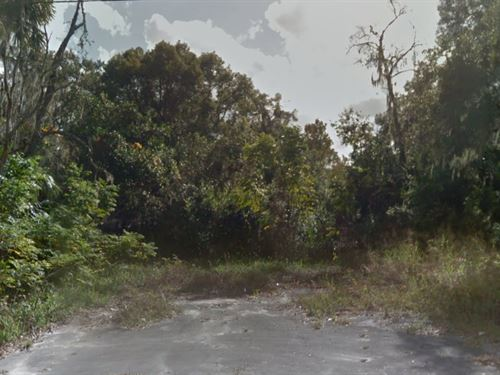Prime Volusia Land $145,000 : Deland : Volusia County : Florida