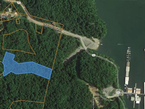 Acreage Close to Dale Hollow Lake : Burkesville : Cumberland County : Kentucky