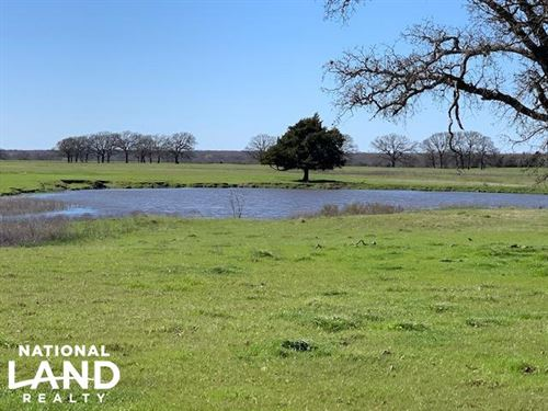 16 Acres Near Mabank With Scattered : Mabank : Kaufman County : Texas