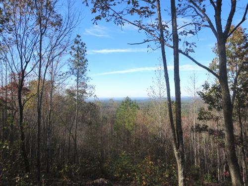 Mountaintop Lot On Scenic Dr : Lineville : Clay County : Alabama
