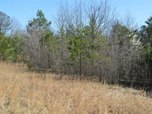 2.78 Acres Located Near Greer : Greer : Greenville County : South Carolina