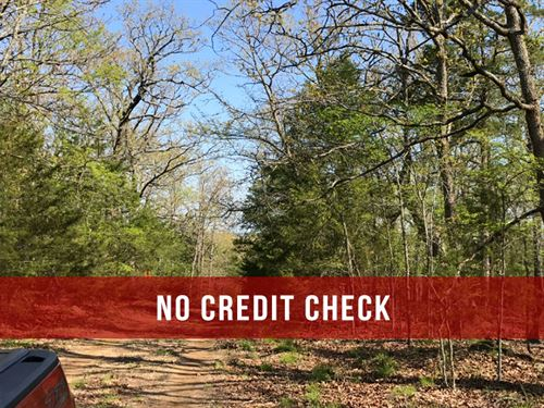 6 Acres At Timber Shoals Ranch : Cedarcreek : Taney County : Missouri