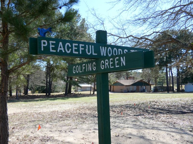 Holly Lake Ranch Lot, East Texas : Holly Lake Ranch : Wood County : Texas