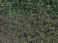 Compass Lake Building Lot Near Lake : Marianna : Jackson County : Florida