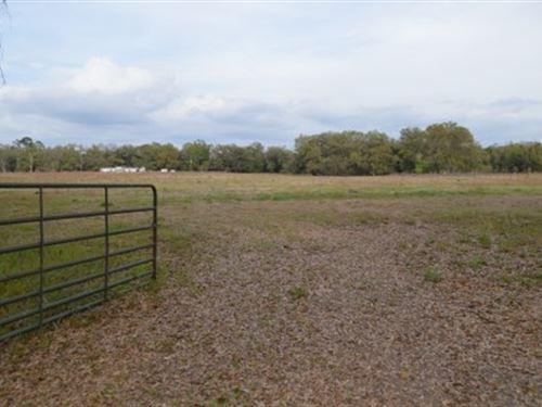 Gorgeous 10 Acres : Live Oak : Suwannee County : Florida