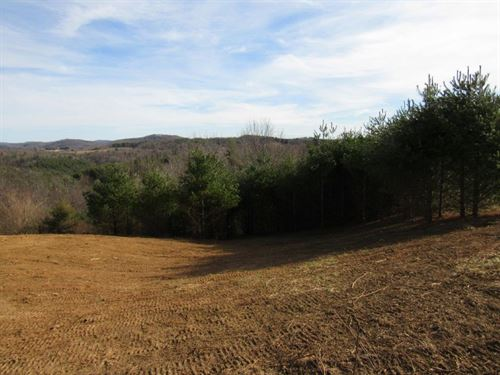 Unrestricted Land Indian Valley VA : Willis : Floyd County : Virginia