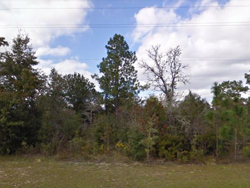 Washington County, Fl $9,000 Neg : Chipley : Washington County : Florida