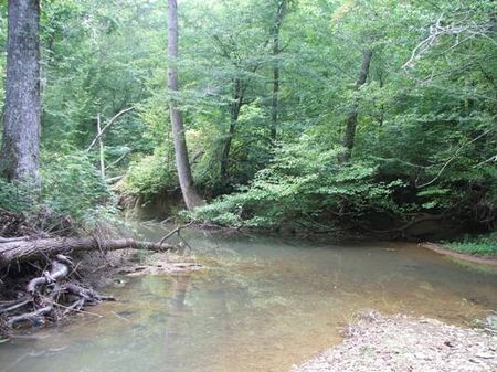 17 Acres On Wolf Creek : Townley : Fayette County : Alabama
