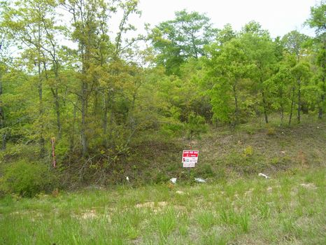 3 Acre Execllent for Home Sites : Greenville  : Butler County : Alabama