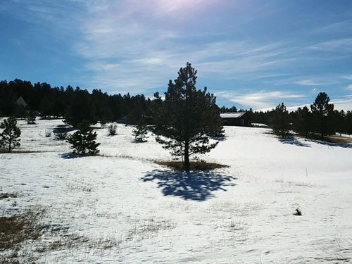 Land in Central Colorado Mountains : Florissant : Teller County : Colorado