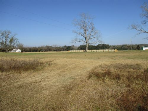 North Florida Land 20 Acres : Monticello : Jefferson County : Florida