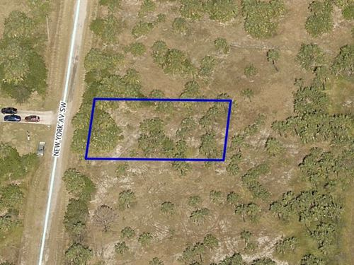 Residential Land, Sw Palm Bay, Fl : Palm Bay : Brevard County : Florida