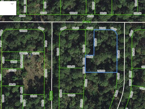 Residential Land, Avon Park, Fl : Avon Park : Highlands County : Florida