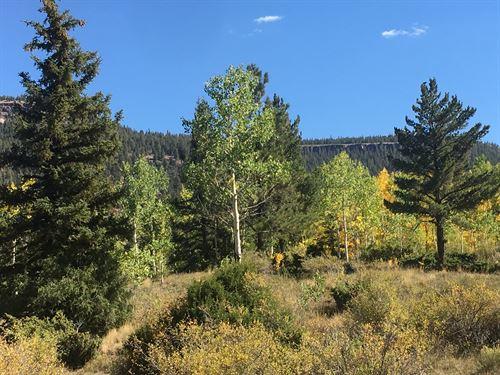 Build This Lot Colorado Mountain : Antonito : Conejos County : Colorado