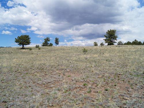 Almost 5 Acres Mountain Views : Guffey : Park County : Colorado